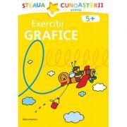Exercitii grafice pentru gradinita. Colectia Steaua cunoasterii (Galben) - Birgit Fuchs