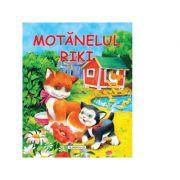 Motanelul Riki - WILGA