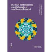 Orientari moderne in psihoterapie si consiliere psihologica - Irina Holdevici, Barbara Craciun