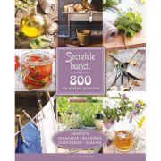 Secretele bunicii. 800 de sfaturi practice - sanatate, frumusete, bucatarie, gospodarie, gradina