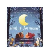 What is the Moon? - Katie Daynes