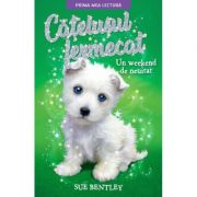 Catelusul fermecat. Un weekend de neuitat - Sue Bentley
