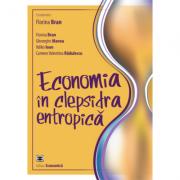 Economia in clepsidra entropica - Florina Bran, Gheorghe Manea, Ildikó Ioan, Carmen Valentina Radulescu