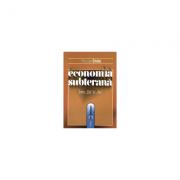 """Economia subterana intre """"da"""" si """"nu"""" - Nicolae Craiu"""