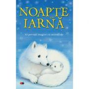 Noapte de iarna. 10 povesti magice cu animalute