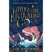 Where the River Runs Gold - Sita Brahmachari