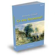 Ce este fenomenul? - Alexander Schnell
