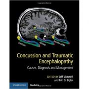 Concussion and Traumatic Encephalopathy: Causes, Diagnosis and Management - Jeff Victoroff, Erin D. Bigler