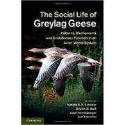 The Social Life of Greylag Geese: Patterns, Mechanisms and Evolutionary Function in an Avian Model System - Isabella B. R. Scheiber, Brigitte M. Weib, Josef Hemetsberger, Kurt Kotrschal
