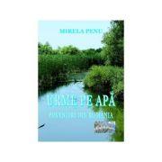 Urme pe apa. Povestiri din Romania - Mirela Penu