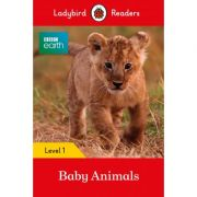 BBC Earth Baby Animals