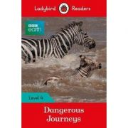 BBC Earth. Dangerous Journeys
