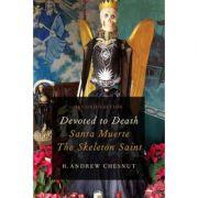 Devoted to Death: Santa Muerte, the Skeleton Saint - R. Andrew Chesnut