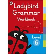 Ladybird Grammar Workbook Level 6