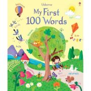 My First 100 Words - Felicity Brooks