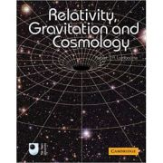 Relativity, Gravitation and Cosmology - Robert J. A. Lambourne