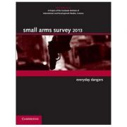 Small Arms Survey 2013: Everyday Dangers