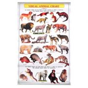 Visual Animal Chart. Level 2