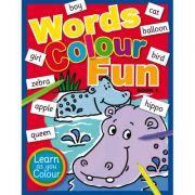 Words Colour Fun Book 1