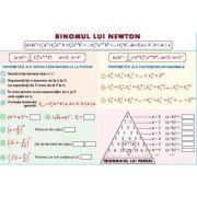 Binomul lui Newton/ Elemente de combinatorica - Plansa dubla (MP23)