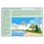 Circuitul apei in natura - Plansa 1000x700 mm, cu sipci (GP23)