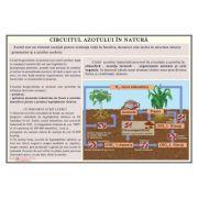 Circuitul azotului in natura - Plansa 1000x700 mm, cu sipci (GP25)