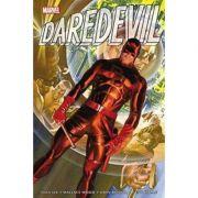 Daredevil Omnibus Vol. 1 - Stan Lee, Dennis O'Neil