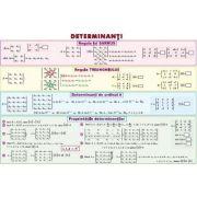 Determinanti/ Functia putere - Plansa dubla (MP21)