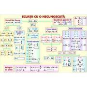 Ecuatii cu o necunoscuta/Prisma - Plansa fata-verso (MP13)