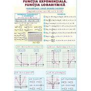 Functia exponentiala. Functia logaritmica/ Integrala definita - Plansa dubla (MP20)