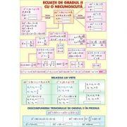 Ecuatii de gradul II cu o necunoscuta/Transformari geometrice - Plansa fata-verso (MP10)