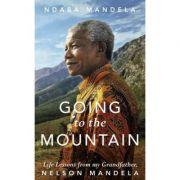 Going to the Mountain - Ndaba Mandela