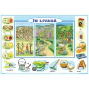 In livada / La zoo - Plansa cu 2 teme distincte