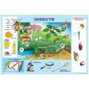 Insecte / Meserii - Plansa cu 2 teme distincte