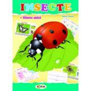 Mapa Insecte - Inesa Tautu