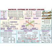 Matrice. Sisteme de ecuatii liniare/ Sfera inscrisa in corpurile de rotatie - Plansa dubla (MP16)