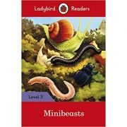 Minibeasts. Ladybird Readers Level 3