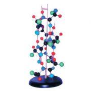 Mulaj structura proteinei secundare