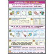 Ortografierea grupurilor: chi /ci si che/ce \ Adjectivul (DUO) - Plansa cu 2 teme distincte (CP16)