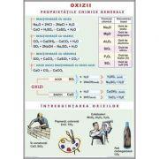 Oxizii / Tipuri de reactii chimice (duo) - Plansa cu 2 teme distincte (CH9)