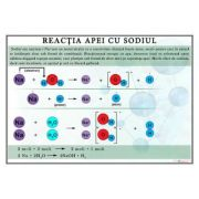 Plansa - Reactia apei cu sodiul (CH13)