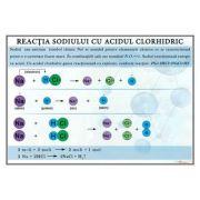 Plansa - Reactia sodiului cu acidul clorhidric (CH14)