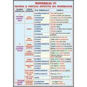 Plansa dubla - Numeralul/ Pronumele II (LR9)