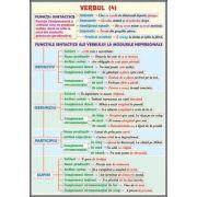 Plansa dubla - Functii sintactice/ Conversiunea-schimbarea valorii gramaticale (LR13)