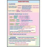 Plansa dubla - Substantivul/ Cazurile substantivului (LR4)