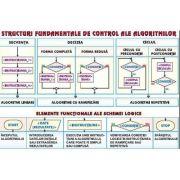 Plansa structuri fundamentale de control ale algoritmilor/ Sisteme de numeratie - duo (INP4)