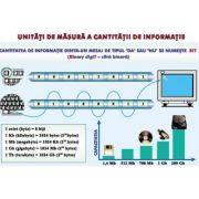 Plansa unitati de masura a cantitatii de informatie/ Sisteme de operare - duo (INP2)