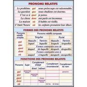 Plansa dubla - Pronoms relatifs/ Le pluriel des noms (FP4)