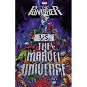 Punisher Vs. The Marvel Universe - Garth Ennis, Len Wein, John Ostrander