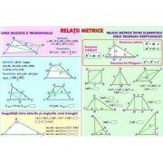 Relatii metrice/Sisteme si totalitati de ecuatii - Plansa fata-verso (MP11)